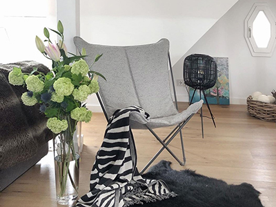 Sphinx Tundra Grey in a contemporary space with plant inspiration
